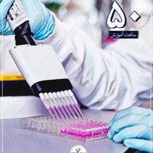 کارآموزی آزمایشگاهی
